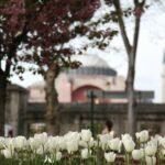 Aile Sohbetleri: Ramazan ve Sorumluluklarımız